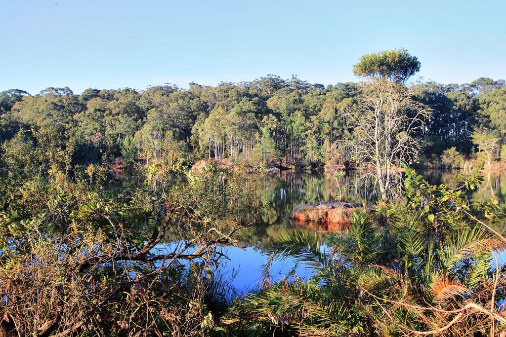 Abendwanderung im Mlilwane Wildlife Sanctuary